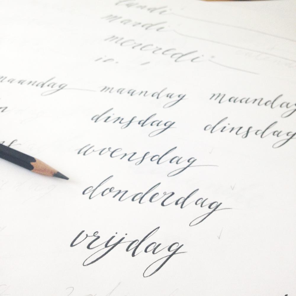 letterhand-dillekamille